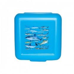 Boîte à sandwich - Requins