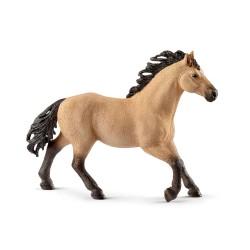 Etalon quarter horse