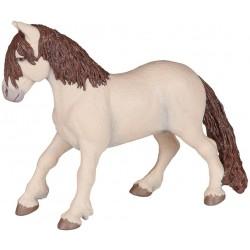 Poney féerique