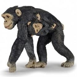 Chimpanzé et son bébé