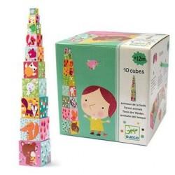 Cubes premier age - Forêt