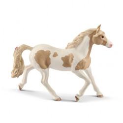 Paint horse jument